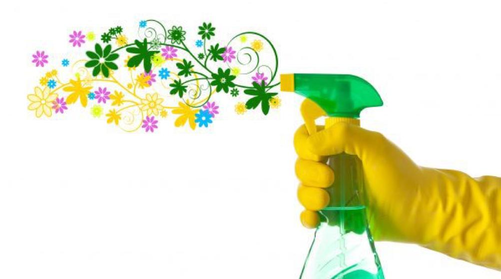 Appuntamento domestico con le pulizie di primavera